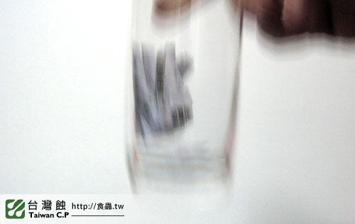 台灣蝕-留言抽蘋果小豬-抽獎-6.jpg
