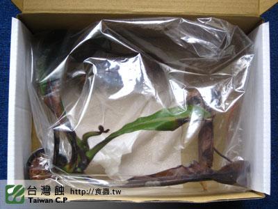 台灣蝕-100923-出貨品管.jpg