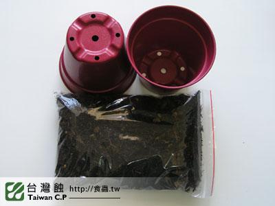 台灣蝕-0206-李小弟出貨品管-3.jpg