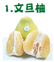 柚子比較1