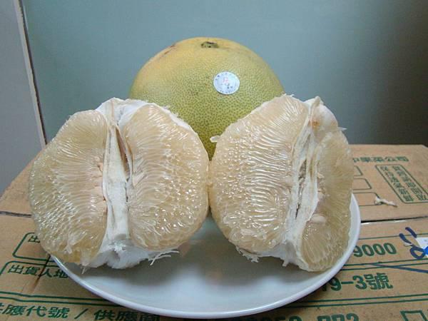 柚子剖開圖.JPG