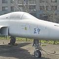 F-5E虎二式戰鬥機 (3)