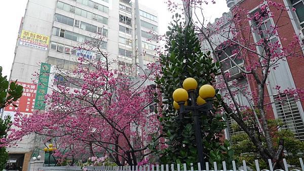 台中州立圖書館:400台中市中區自由路二段2號 (7)