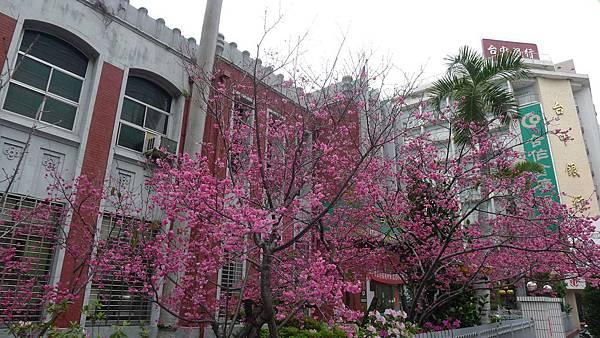 台中州立圖書館:400台中市中區自由路二段2號 (9)