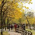 台中部子公園_202003036906