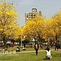台中部子公園_202003036920