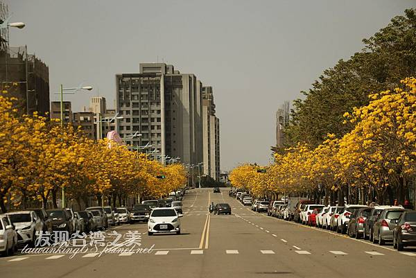 台中部子公園_202003036963