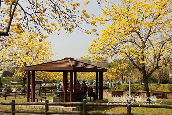 台中部子公園_202003036965