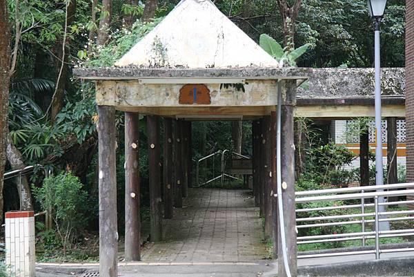 果真是森林小學,連廁所也很森林