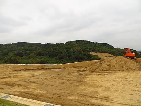 後龍殯葬園區的開發,讓石虎棲息的環境頓時少了一大片。