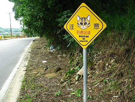 """苗栗縣政府林務科在每個曾發生石虎路死的路段,均設置了""""石虎出沒""""的告示牌,提醒駕駛人減速慢行。"""