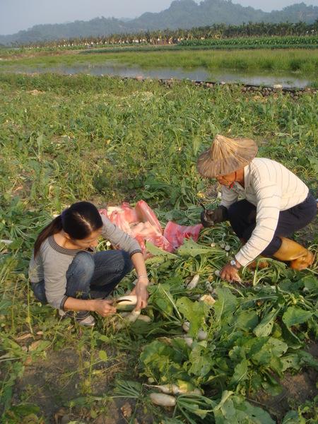 美濃同事家 - 食物05 (20071215)