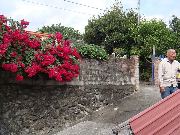 20101217‧太麻里千禧年迎曙光附近的住宅(屋主VS花朵)