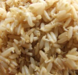 發芽糙米 7