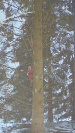 爬樹真好玩DSC05796