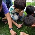 小矮人們發現了什麼寶貝!.JPG