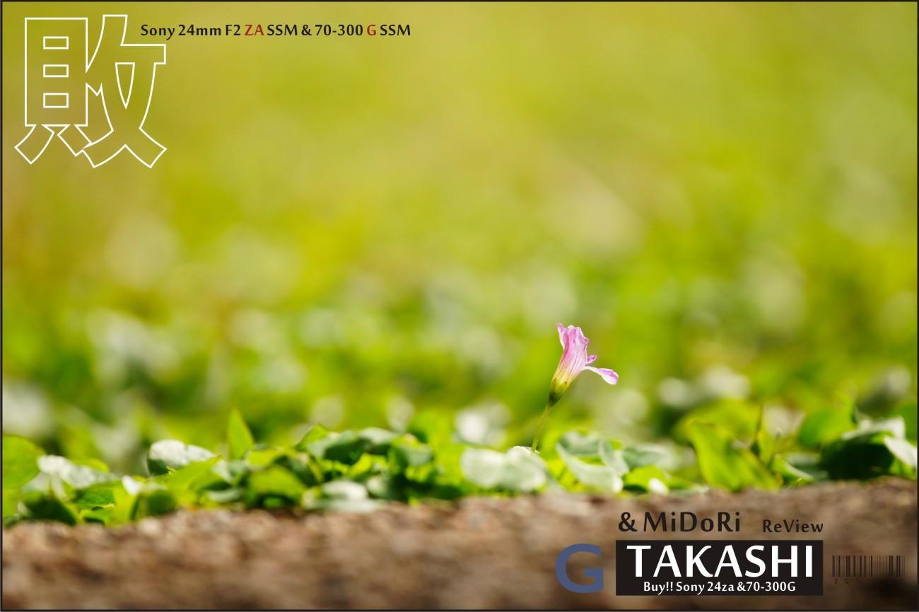 Sony 24za-70300G開箱-30.jpg
