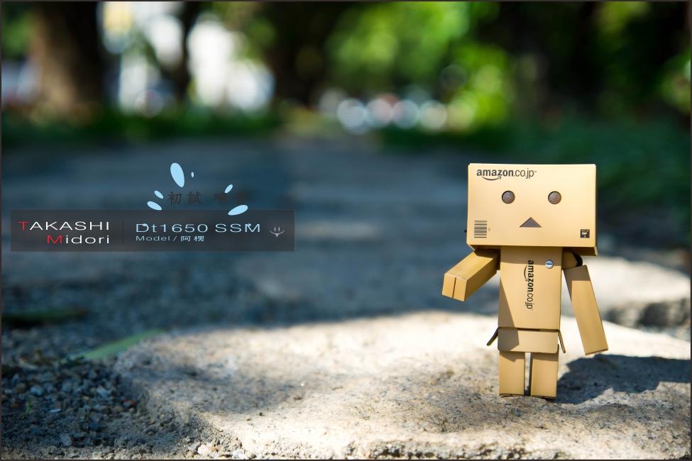 Sony DT1650-初拍-10.jpg
