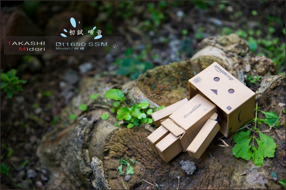 Sony DT1650-初拍-16.jpg