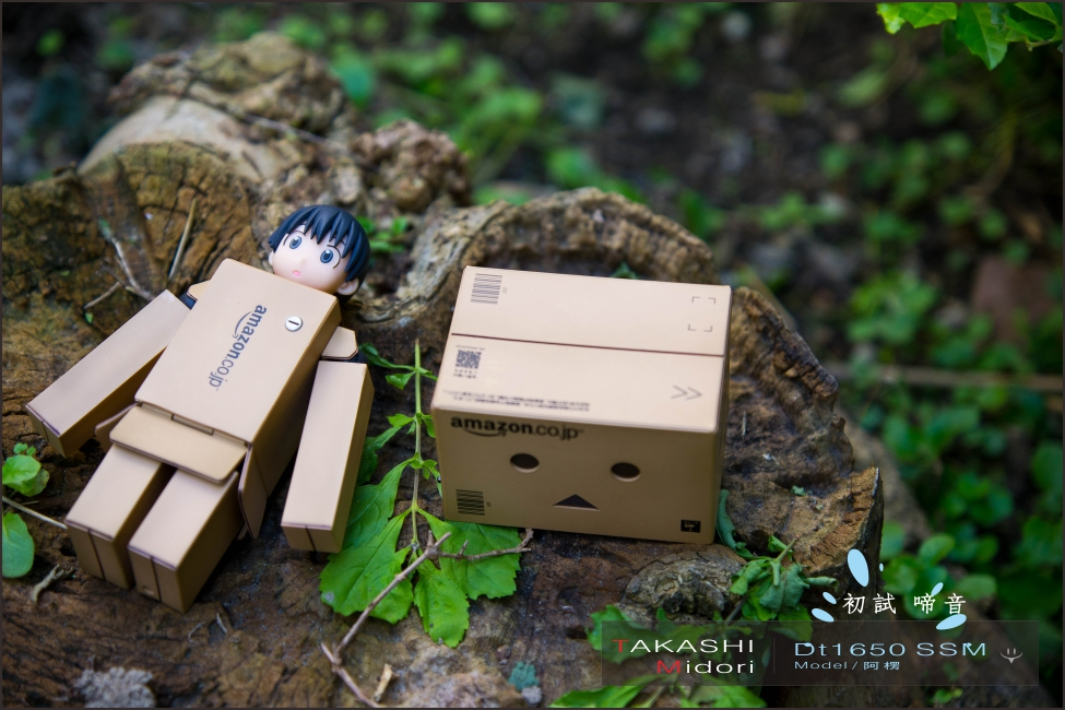 Sony DT1650-初拍-17.jpg
