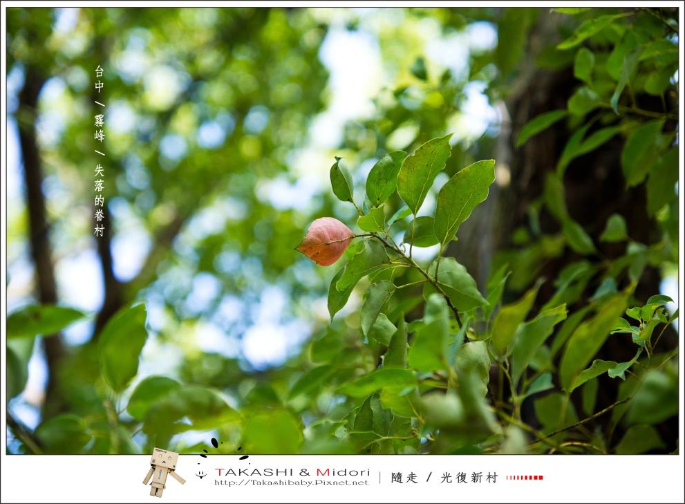 台中霧峰-光復新村-43.jpg