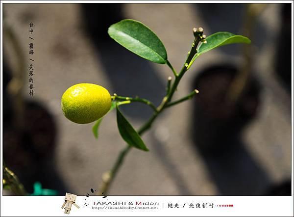 台中霧峰-光復新村-50.jpg