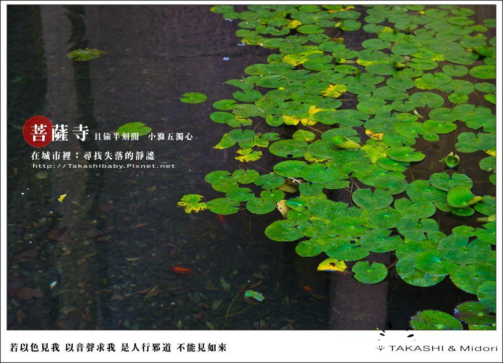 台中。大里菩薩寺-小滌心靈-21