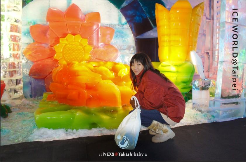 台北冰雕-17.jpg