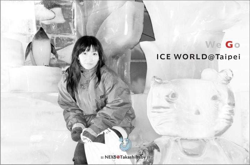 台北冰雕-34.jpg