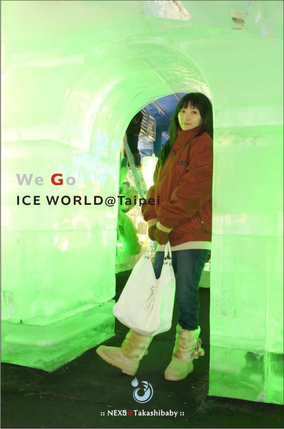 台北冰雕-47.jpg