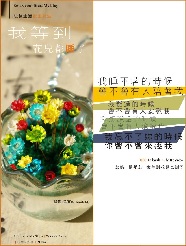 會睡覺的花朵-cover.jpg
