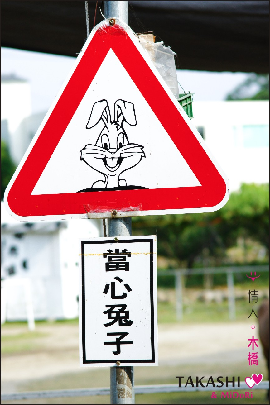 石岡-情人木橋-26.jpg