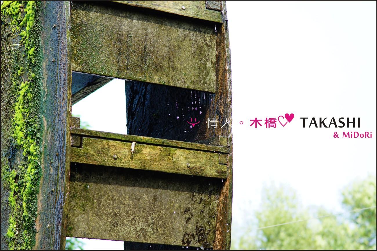 石岡-情人木橋-19.jpg