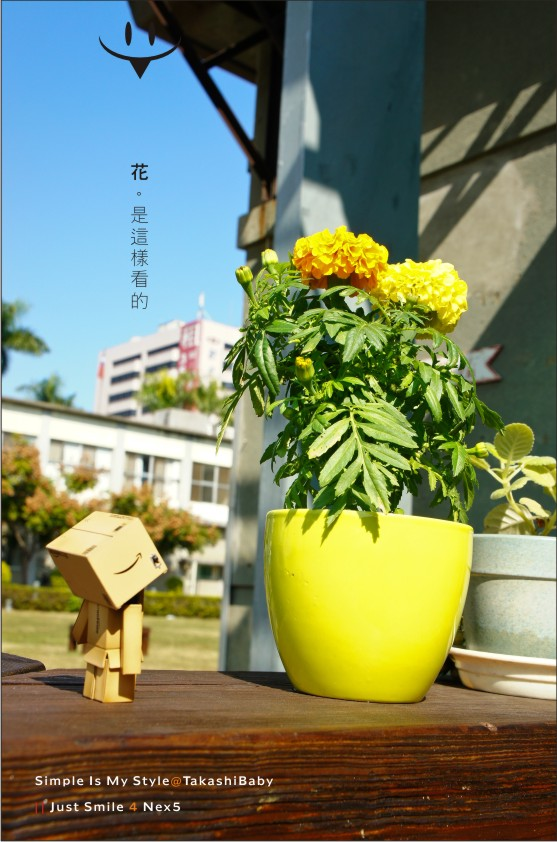 台中-舊酒廠-20.jpg