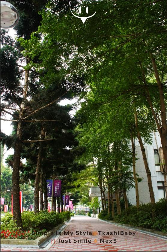 臺北科技大學隨影-6.jpg