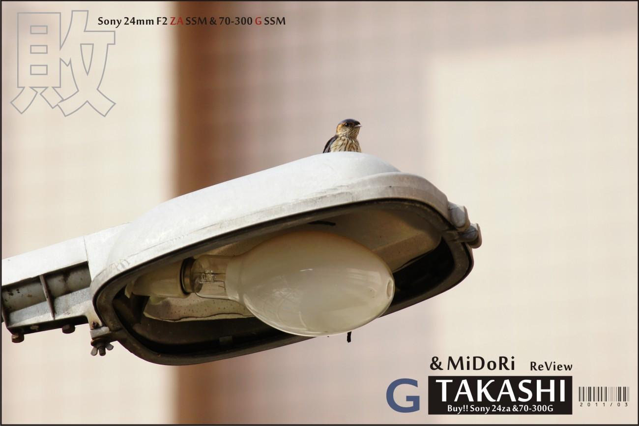 Sony 24za-70300G開箱-31.jpg