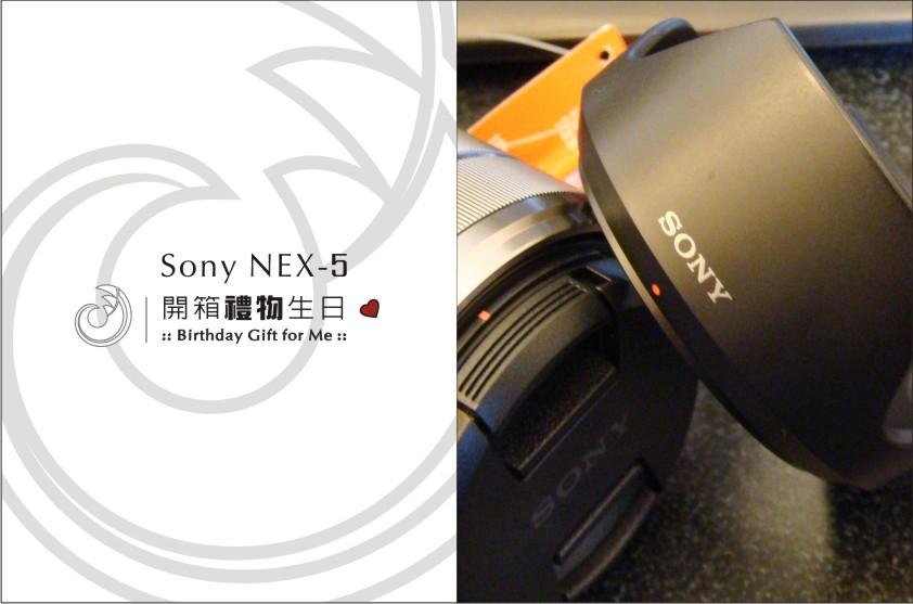 NEX5開箱-1.jpg