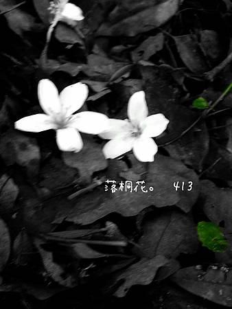 2013-04-13-17-46-34_deco[1]