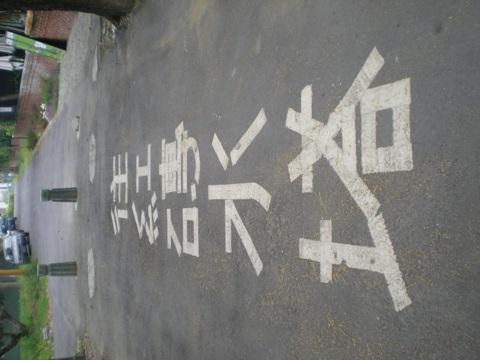 往紅磚水塔.JPG