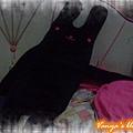 高雄夢時代BF1金石堂-女王妹購買的黑色長枕兔