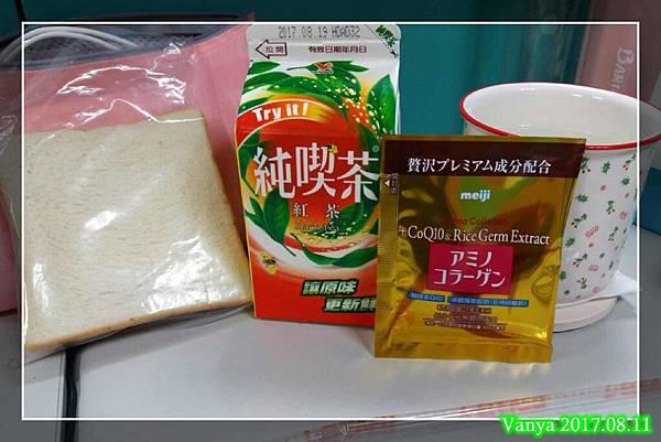 明治膠原蛋白-8%2F11 day6