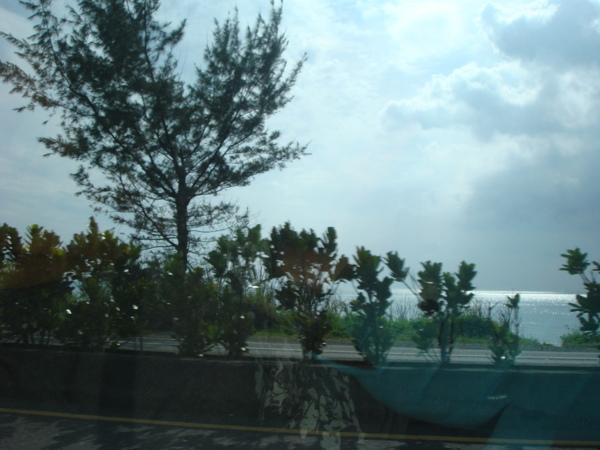 車內見到的景色