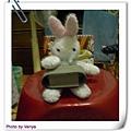 白小兔工作中