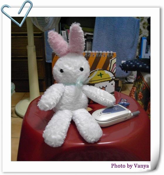 白小兔電話中