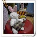 白小兔購物去