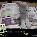 白小兔學習中