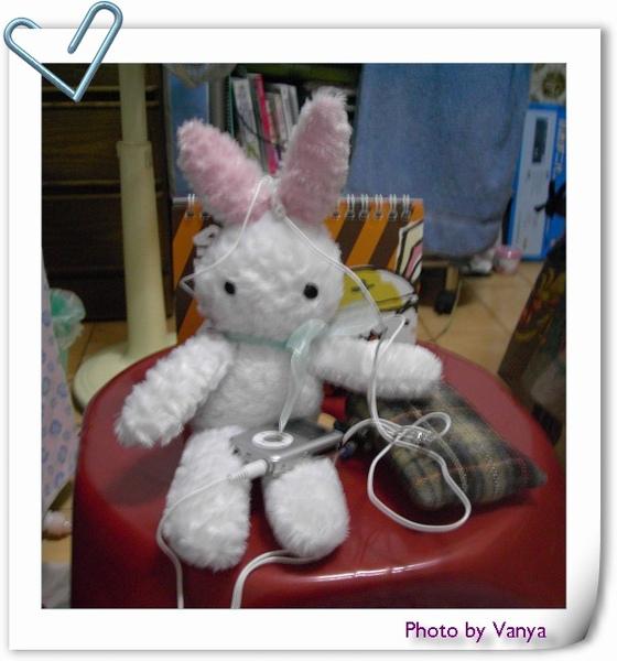白小兔聽音樂