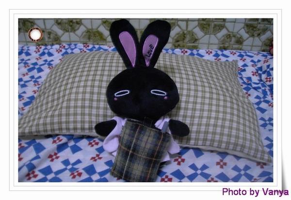 和服小黑兔新造型