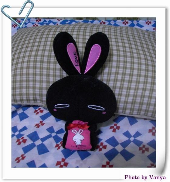 圓圓小黑兔
