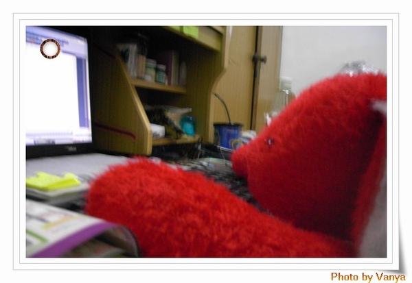 紅兔兔思考中